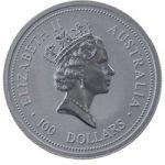 koala platinum